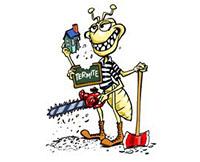 cleveland pest inspection
